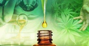Co to jest olej CBD?