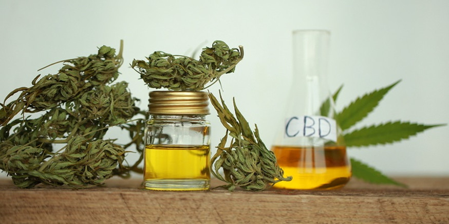 Metody pozyskiwania oleju CBD