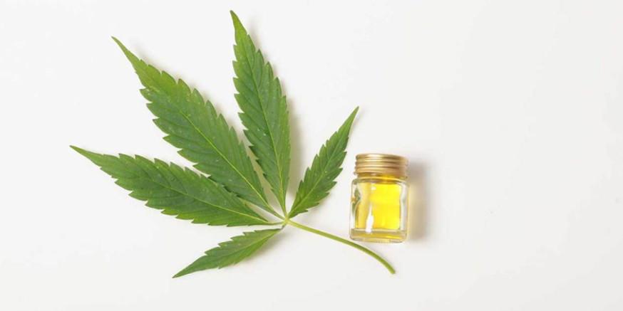 Czy olej CBD działa przeciwwymiotnie?