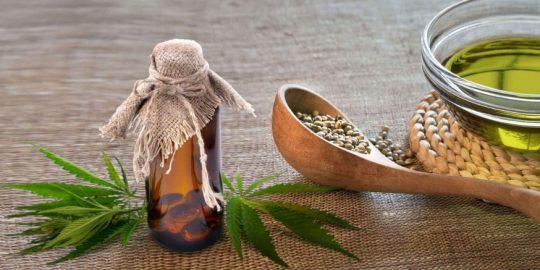 Olej CBD a olej z nasion konopi