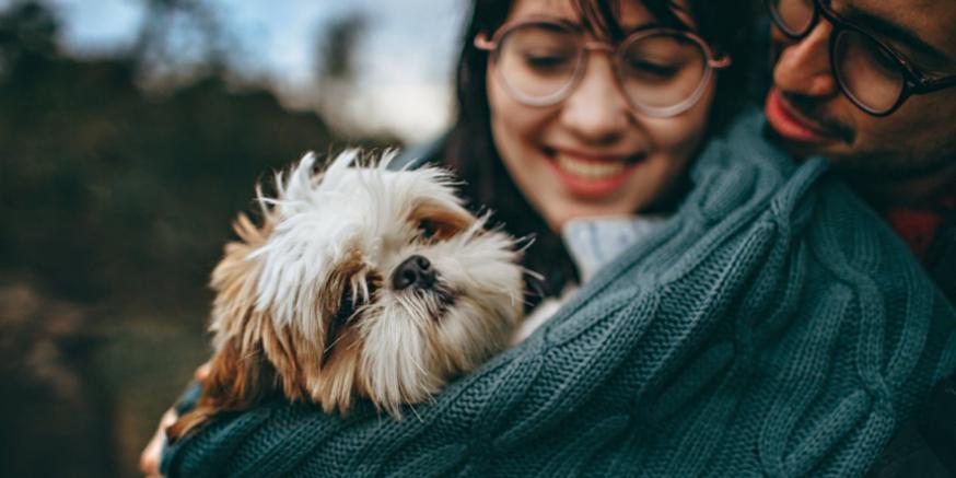 Dawkowanie oleju CBD u psa i kota