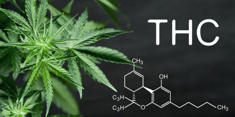 Właściwości THC