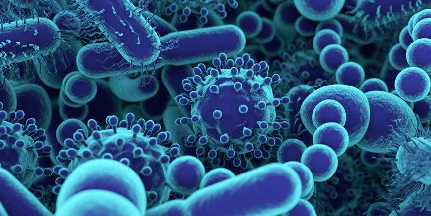 CBD niszczy bakterię gronkowca, rzeżączki i zapalenia opon mózgowych