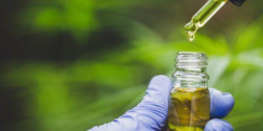 Jak sprawdzić czy mój olej CBD jest dobrej jakości?