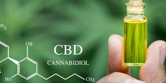 Wszystko co powinieneś wiedzieć o ekstrakcie CBD Full Spectrum